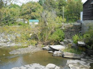 Berne Mill Project Article photo 1